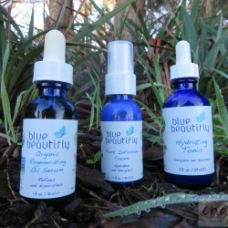 blue beautifly review